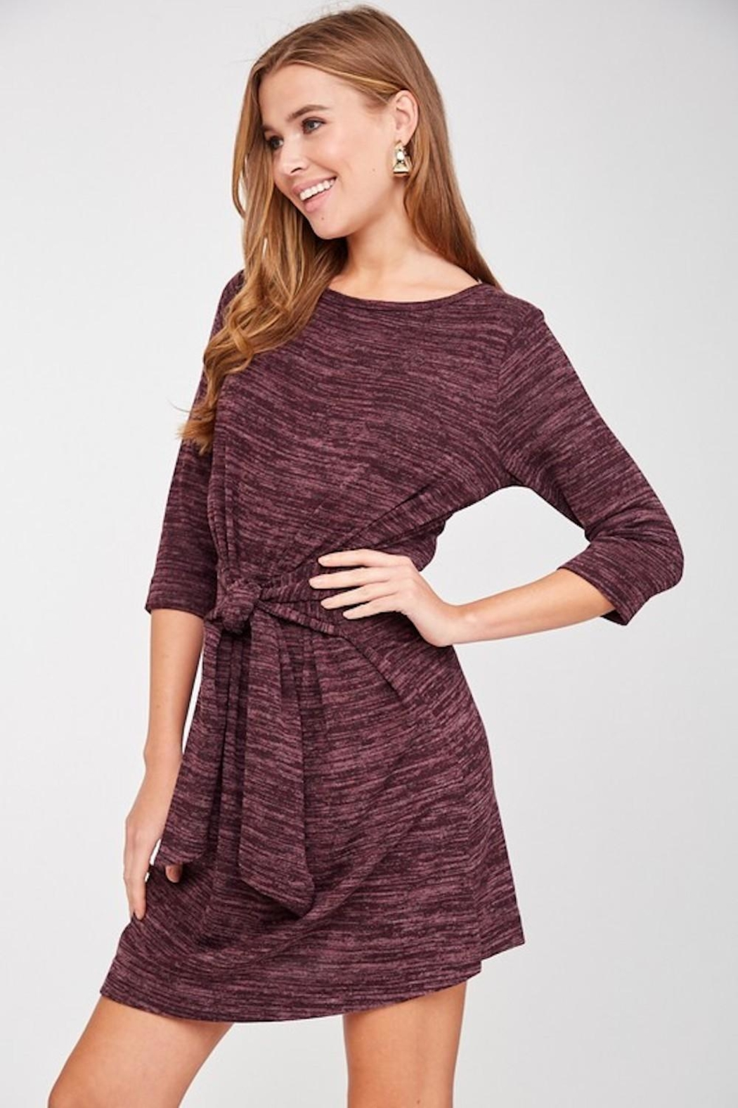 LLove Plum Soft Tie Dress - Back Cropped Image