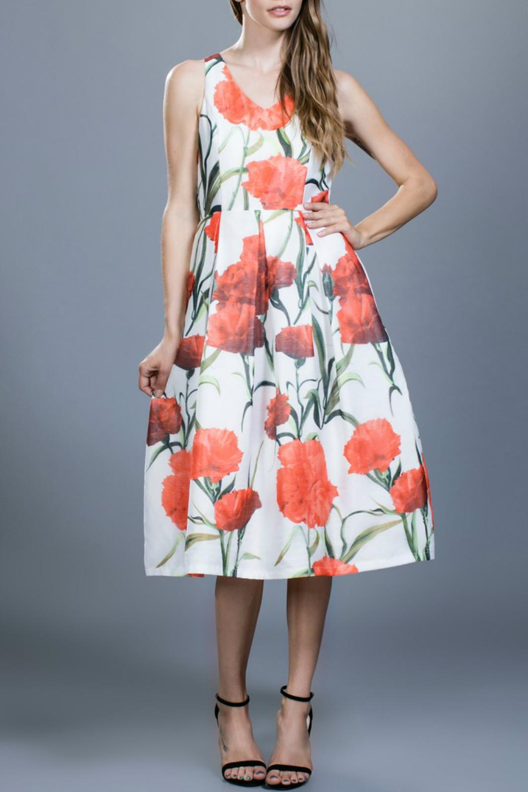 Locust Whimsy Flower Organza Dress - Main Image