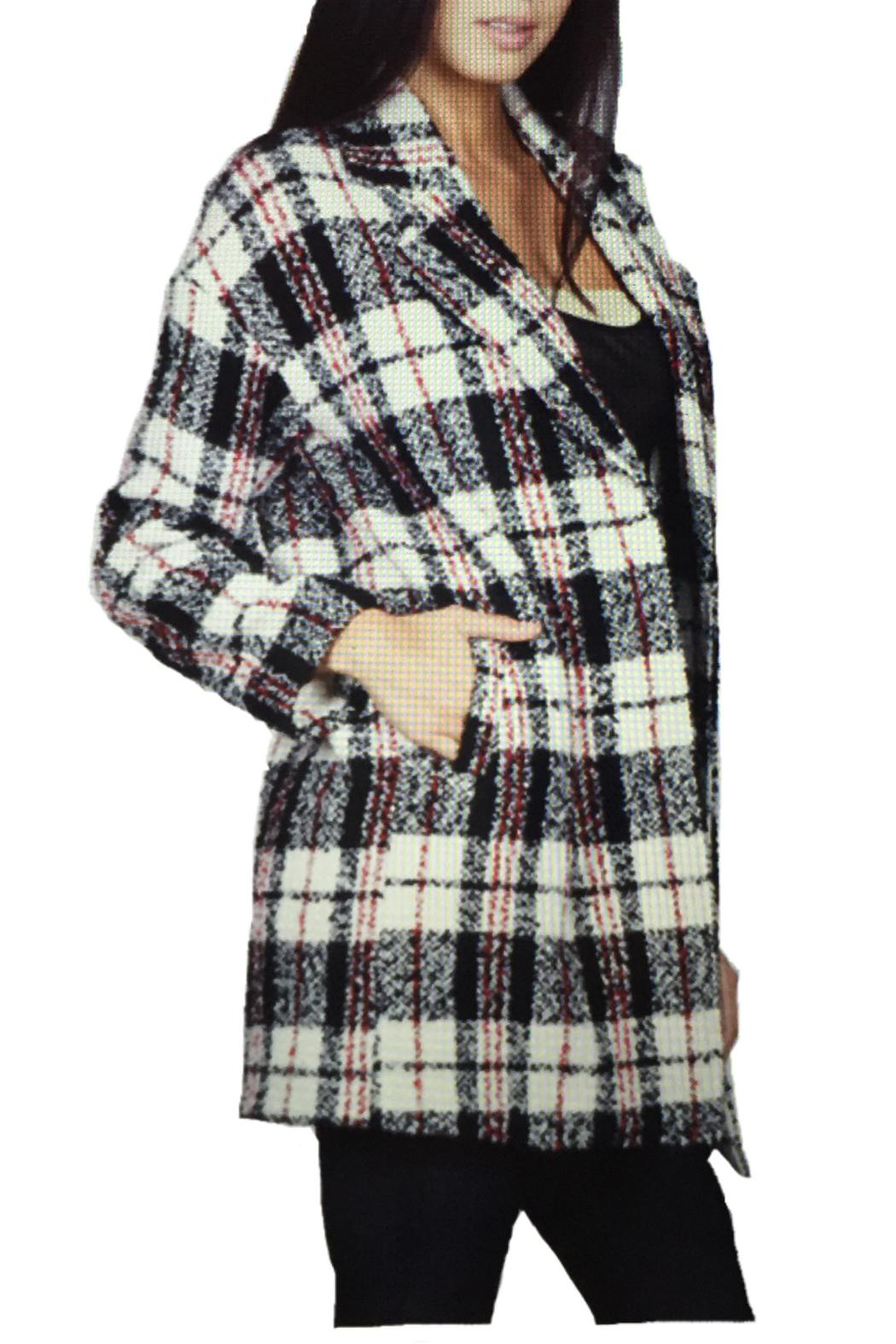 Locust Whimsy Plaid Oversized Coat - Front Full Image