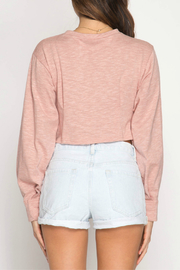 She + Sky Long Balloon Sleeve crop top with pintucking - Front full body