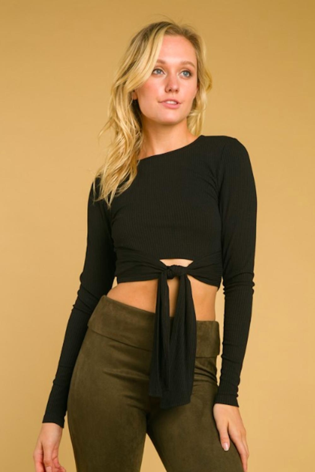 Wild Honey Long Sleeve Crop - Front Cropped Image