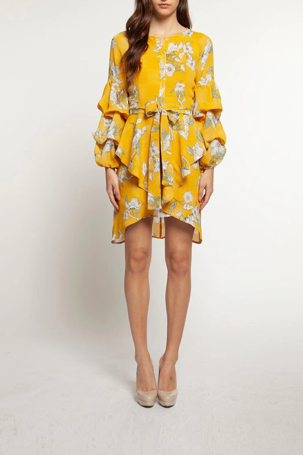 Dex Long Sleeve Floral Dress with Elastic Tie Waist, Bouffant Sleeve Detail and Buttondown Neckline - Front Full Image