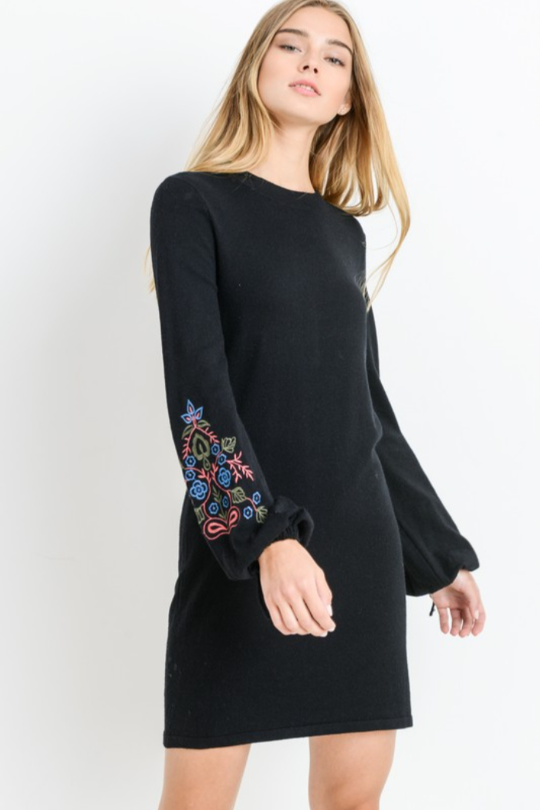 Papercrane Long Sleeve Sweater Dress with Embroidery - Front Full Image