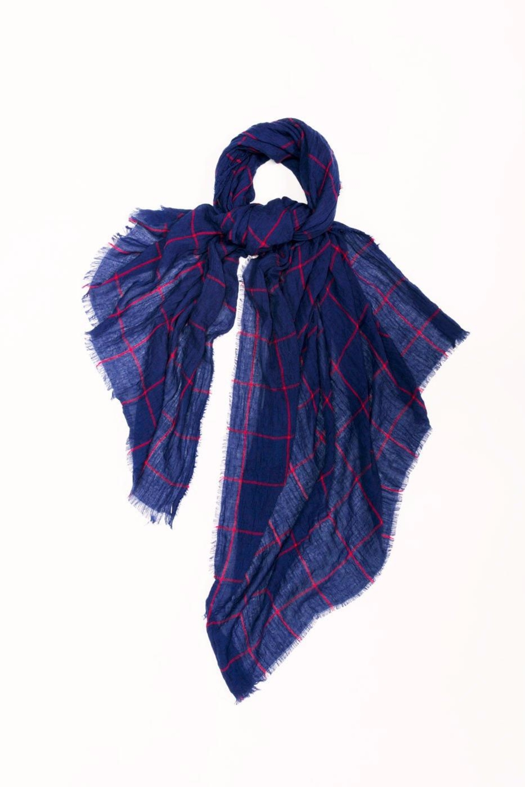 Look by M Navy Grid Scarf - Main Image
