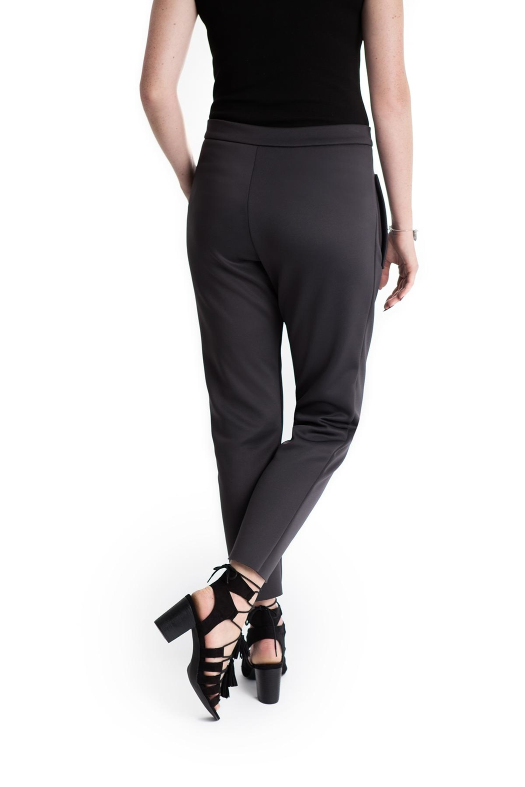Lovan M Costa Charcoal Pant - Side Cropped Image