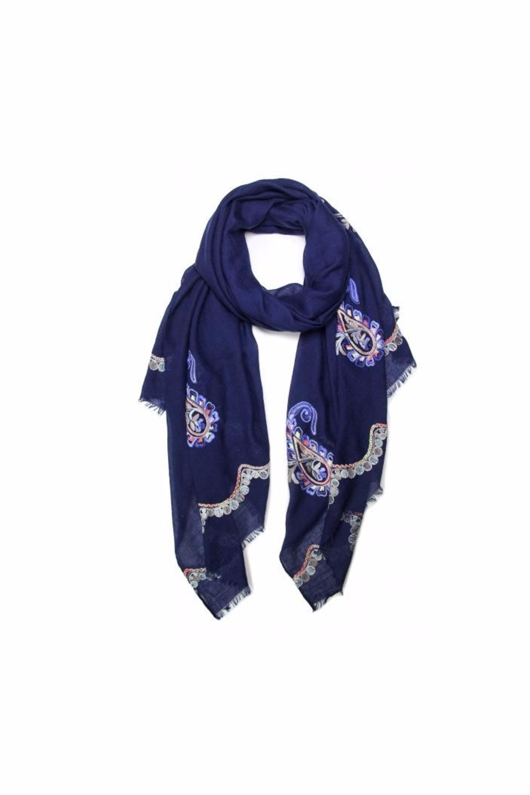 Love of Fashion Embroidered Paisley Scarf - Main Image