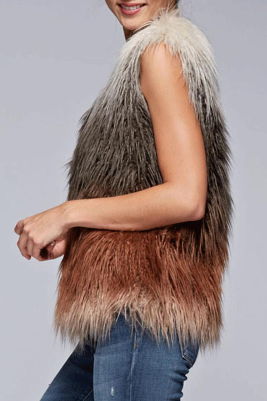 Lovestitch Faux Fur Ombre Vest - Back Cropped Image