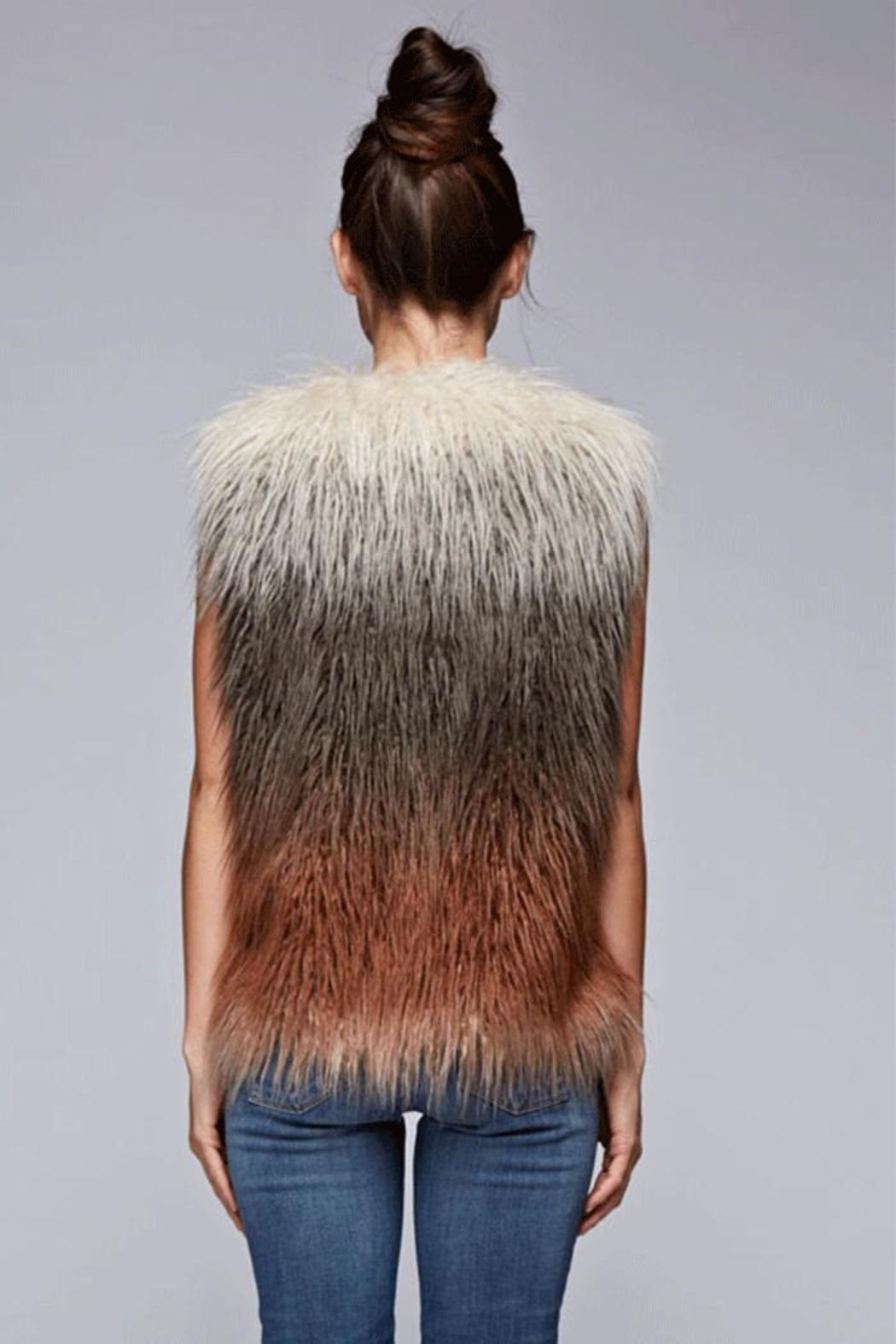 Lovestitch Faux Fur Ombre Vest - Front Full Image