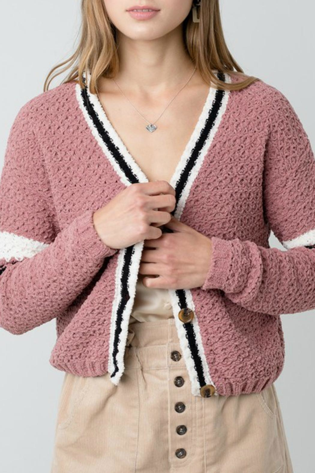 ALB Anchorage Chenille Cropped Cardigan - Front Cropped Image