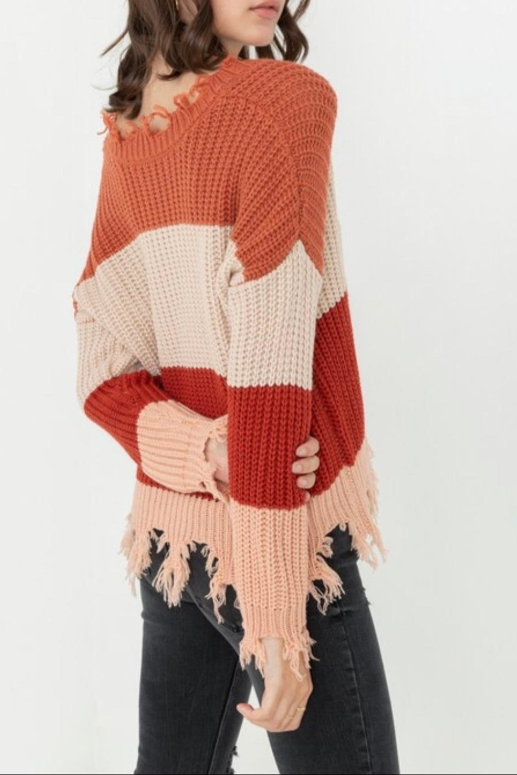 Love Tree Ripped Fringed Sweater - Back Cropped Image