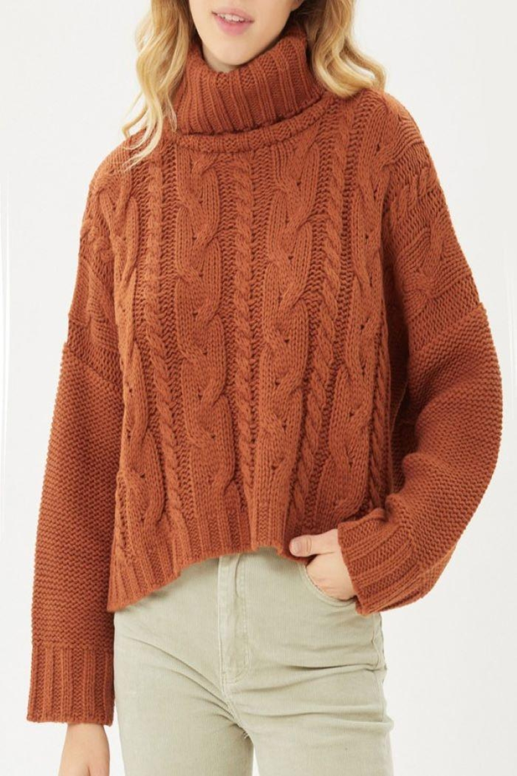 Love Tree Solid Turtleneck Warm Knit Top - Main Image