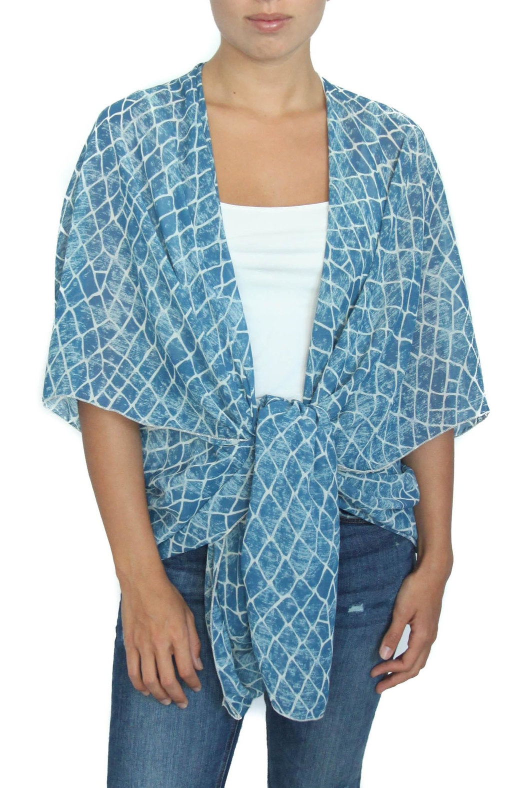 LOVEleigh Blue Alligator Kimono - Front Cropped Image