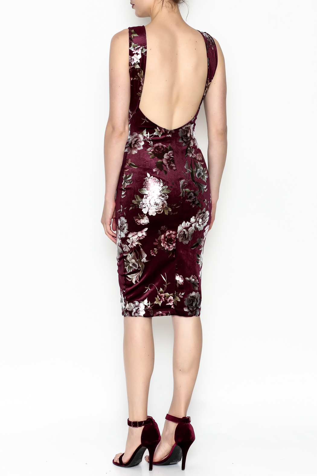 Lovely Day Floral Velvet Dress - Back Cropped Image