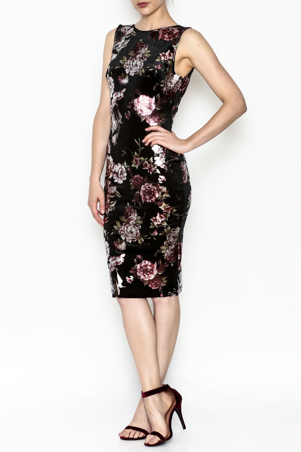 Lovely Day Floral Velvet Dress - Front Cropped Image