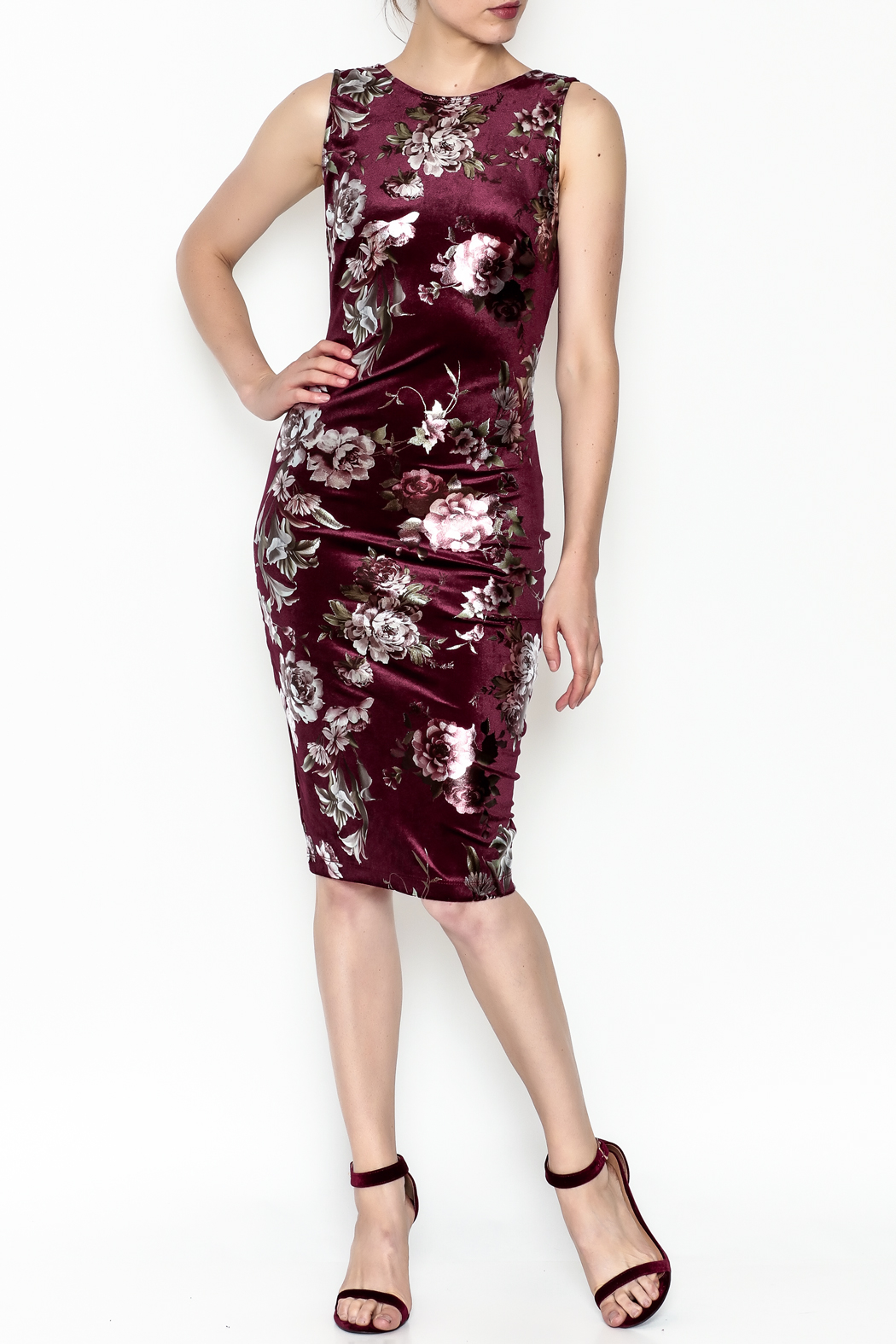 Lovely Day Floral Velvet Dress - Main Image