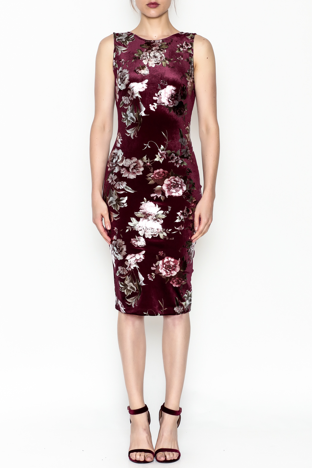 Lovely Day Floral Velvet Dress - Front Full Image