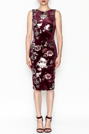 Lovely Day Floral Velvet Dress - Front full body