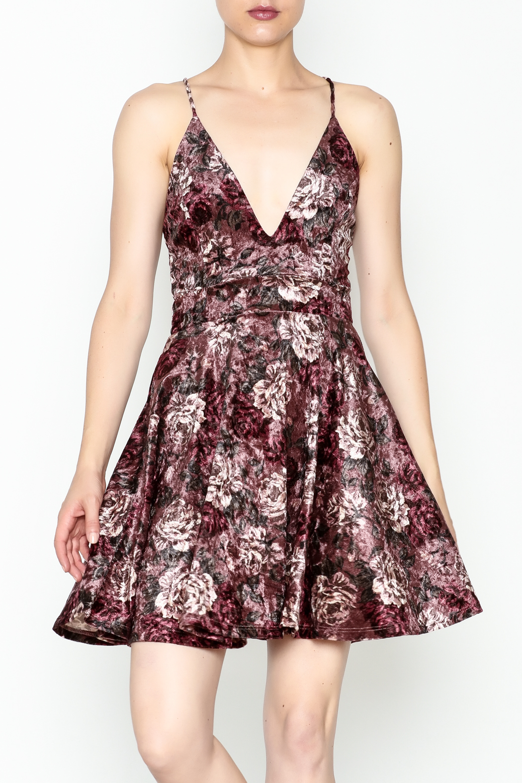 Lovely Day Velvet Floral Dress - Front Cropped Image