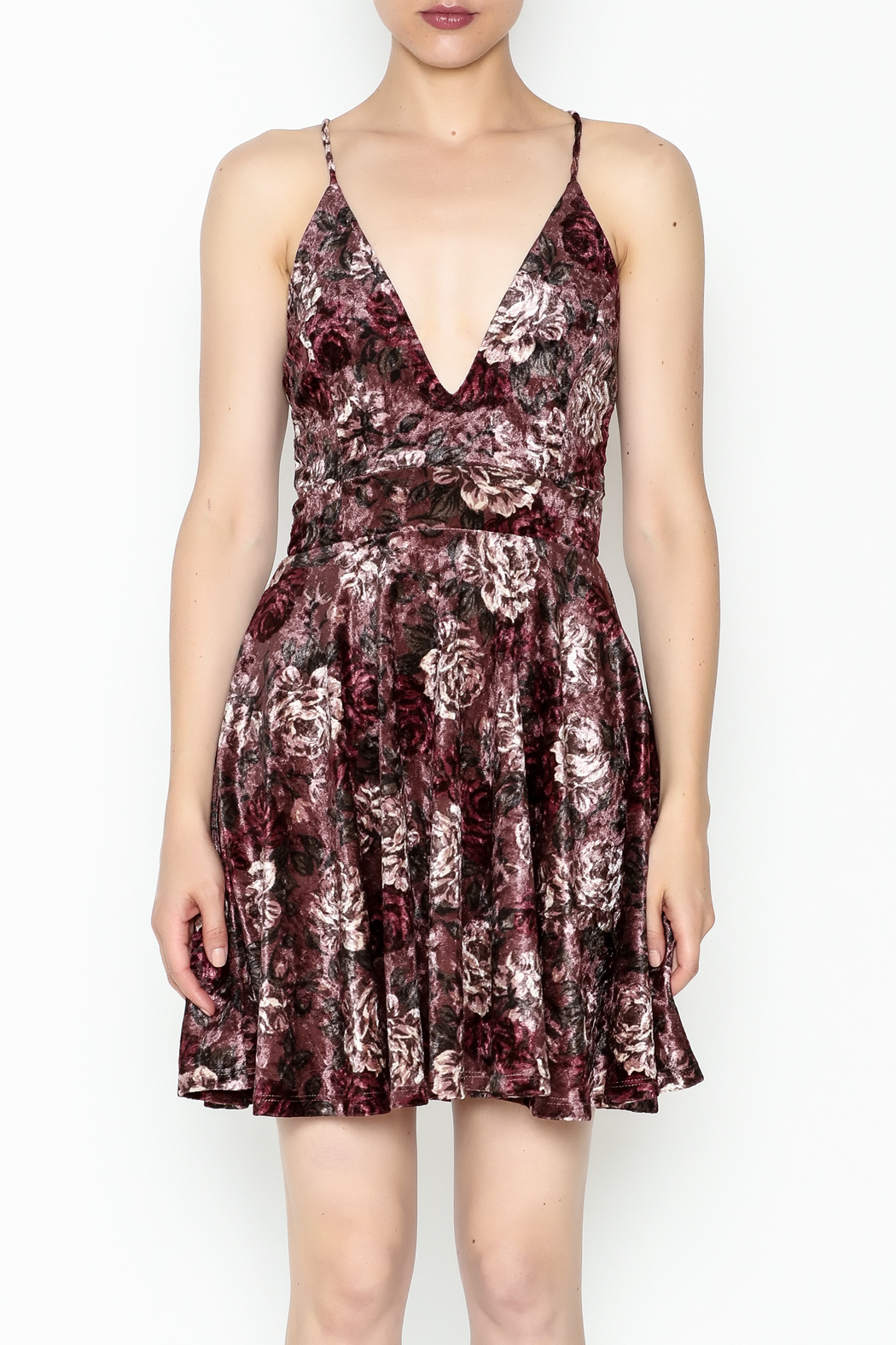 Lovely Day Velvet Floral Dress - Front Full Image