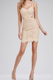 Jovani Lovely Lace Dress - Product Mini Image