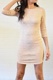 Lovely Day Lace Dress - Front cropped