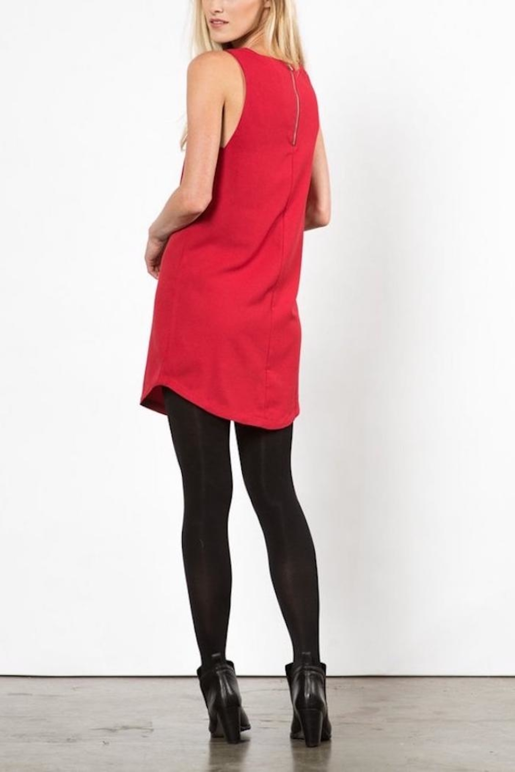 LoveRiche Red Pyramid Dress - Back Cropped Image