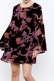 LoveRiche Velvet Floral Dress - Product Mini Image