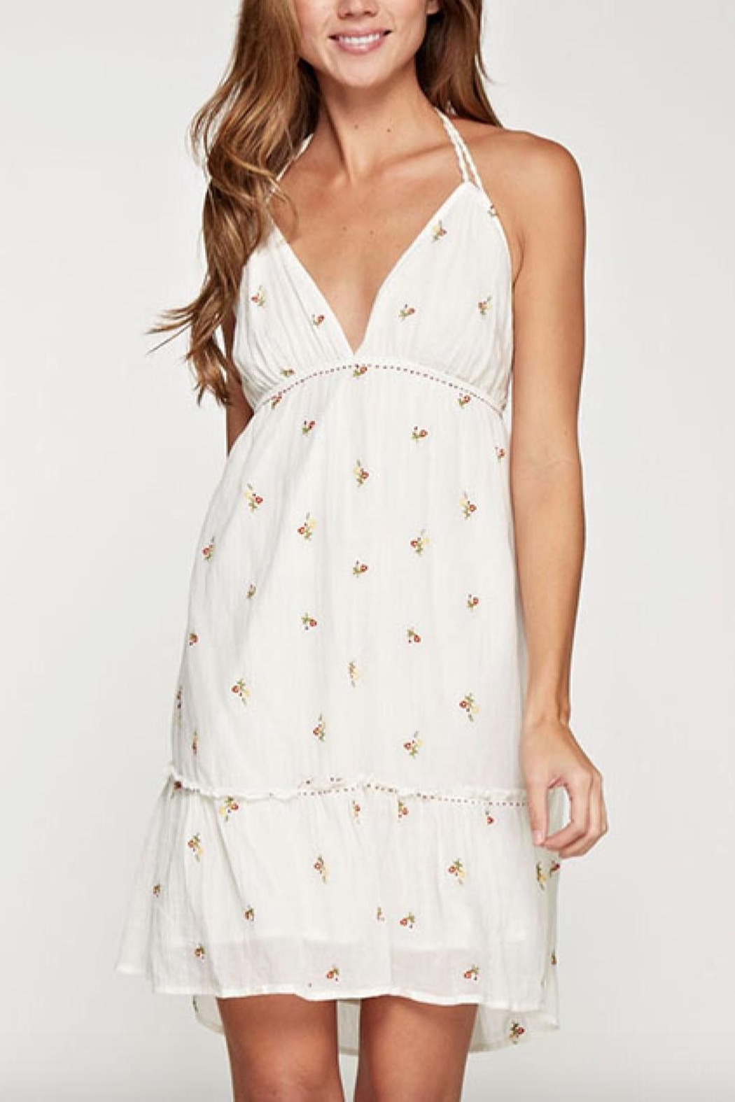 Lovestitch Halter Embroidered Dress - Front Full Image