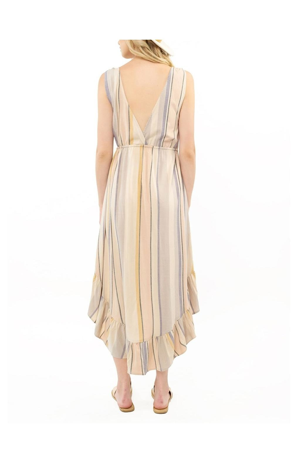 Saltwater Luxe Lovestoned Maxi Dress - Front Full Image