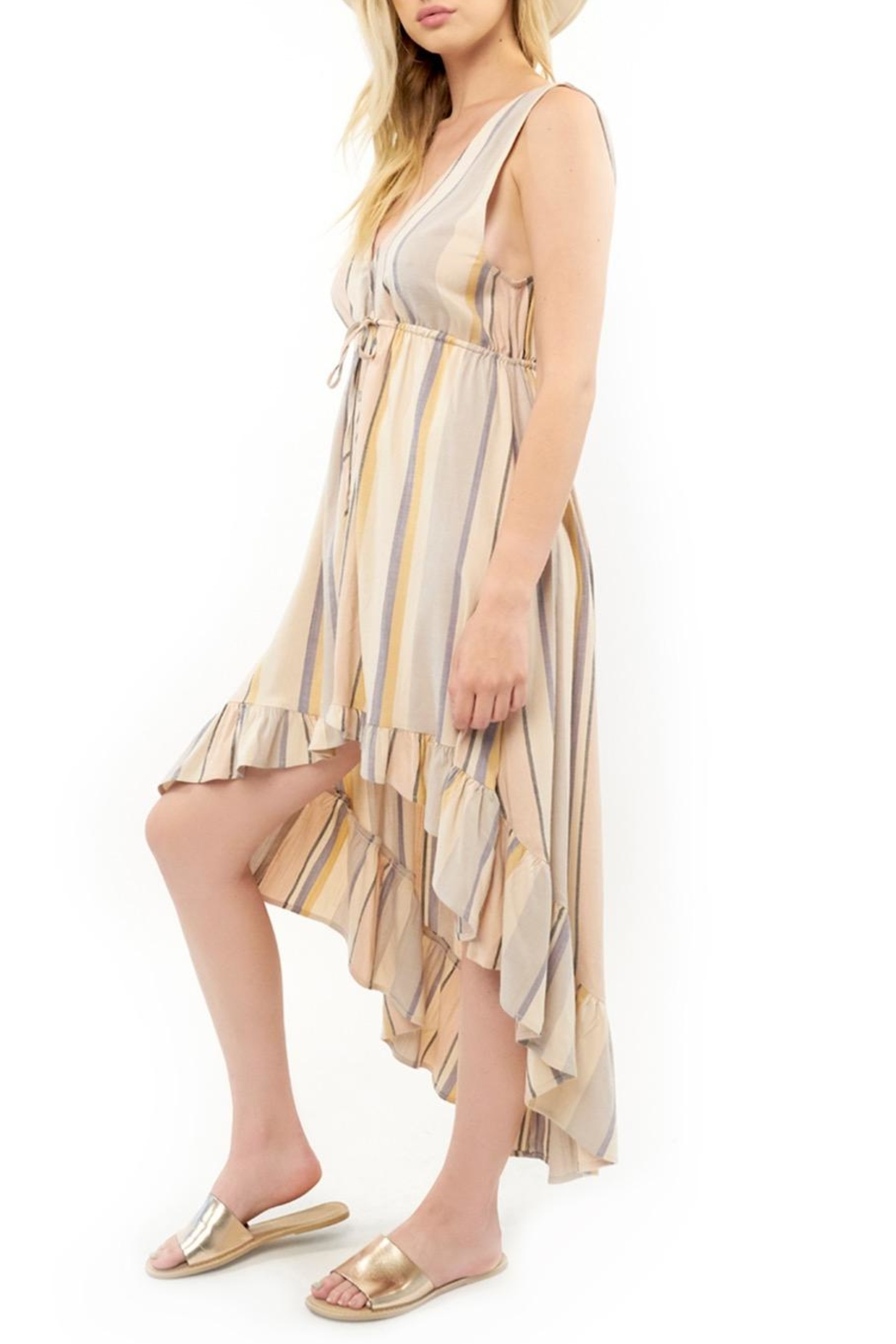 Saltwater Luxe Lovestoned Striped Maxi - Front Full Image