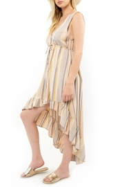 Saltwater Luxe Lovestoned Striped Maxi - Front full body