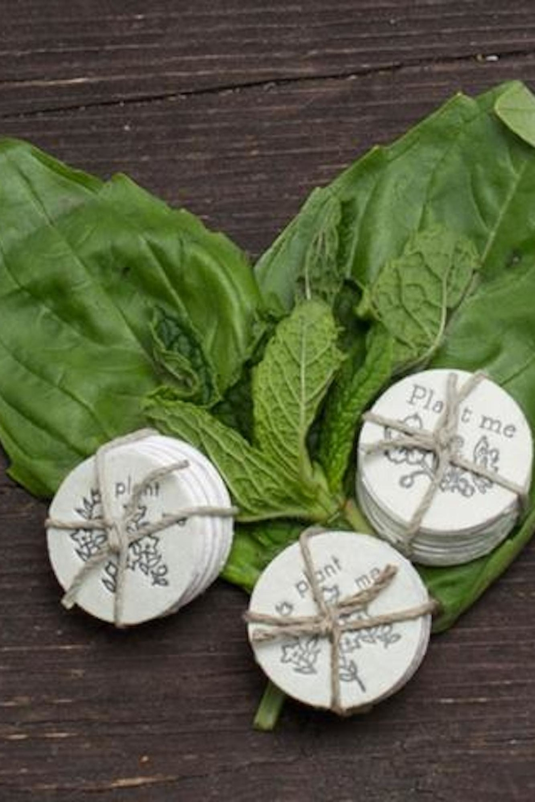 Lovewild Design Herb Seed Coins - Front Full Image