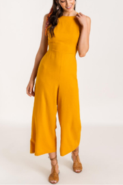 Lush  Low Back Jumpsuit - Back cropped