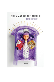 LSU Press News Dilemmas Of Angels Book - Front full body