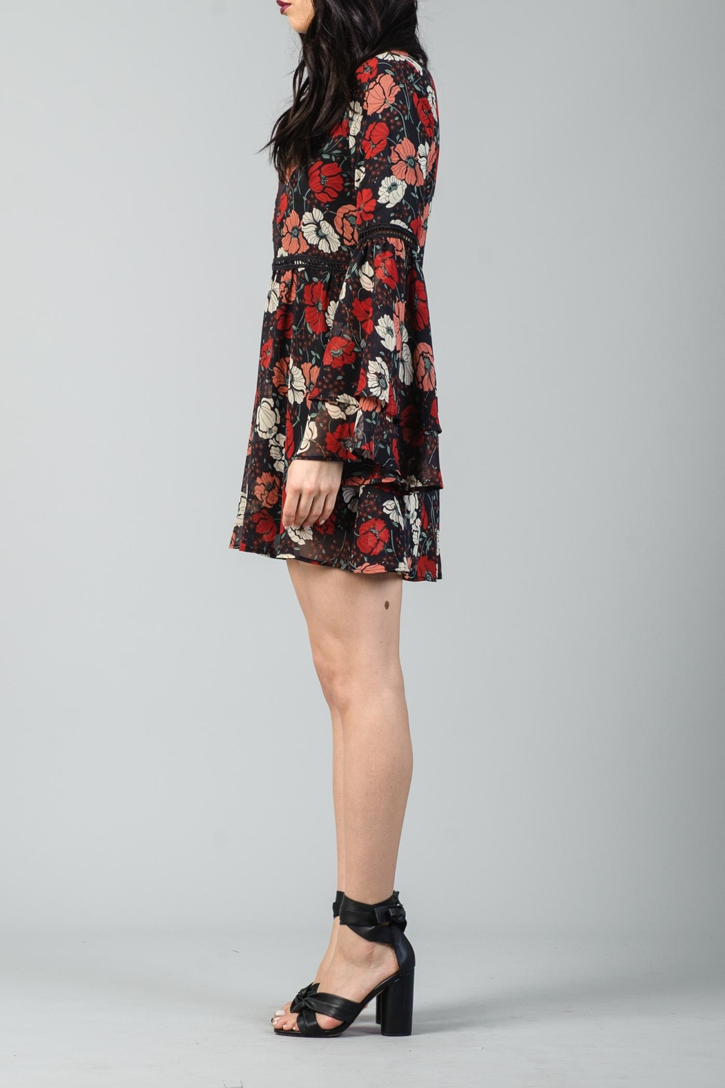 Lucca Inset Panel Dress - Front Full Image