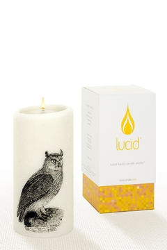 Shoptiques Product: Lucid Owl Pillar