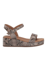 Lucky Brand YG Wendei - Product Mini Image