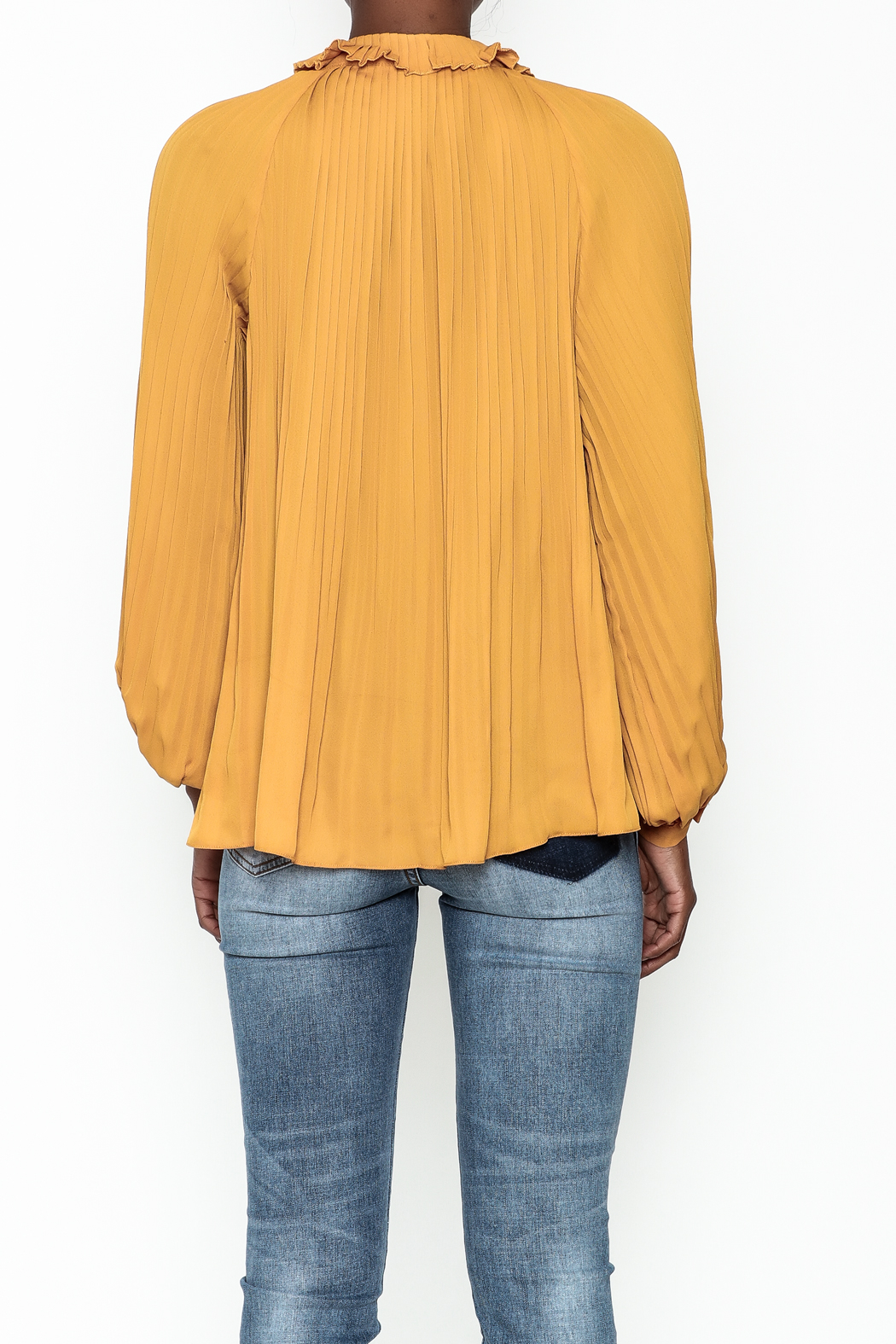 Lucy Paris Olivia Pleated Blouse - Back Cropped Image