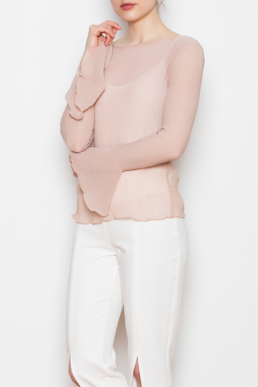 Lucy Paris Sheer Bell Sleeve Top - Front Cropped Image