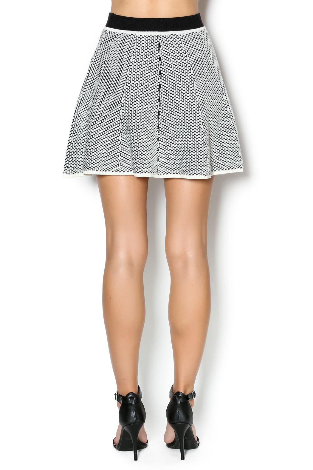 Lucy Paris Skater Skirt - Back Cropped Image