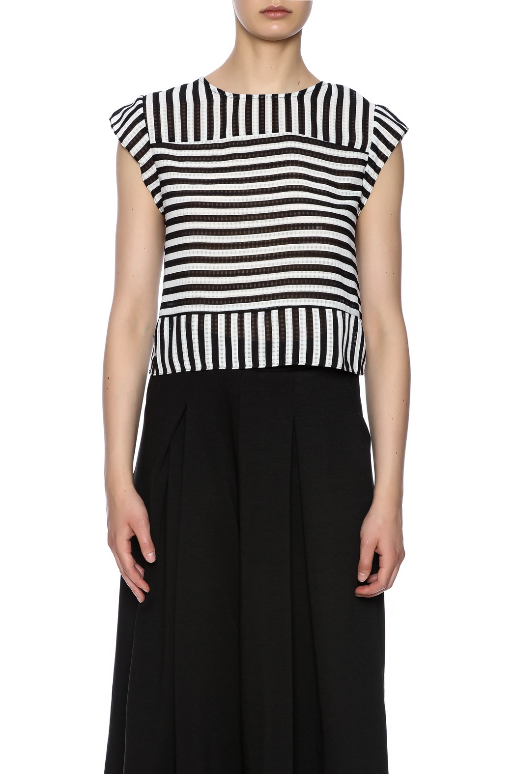 Lucy Paris Stripe Short Sleeve - Side Cropped Image
