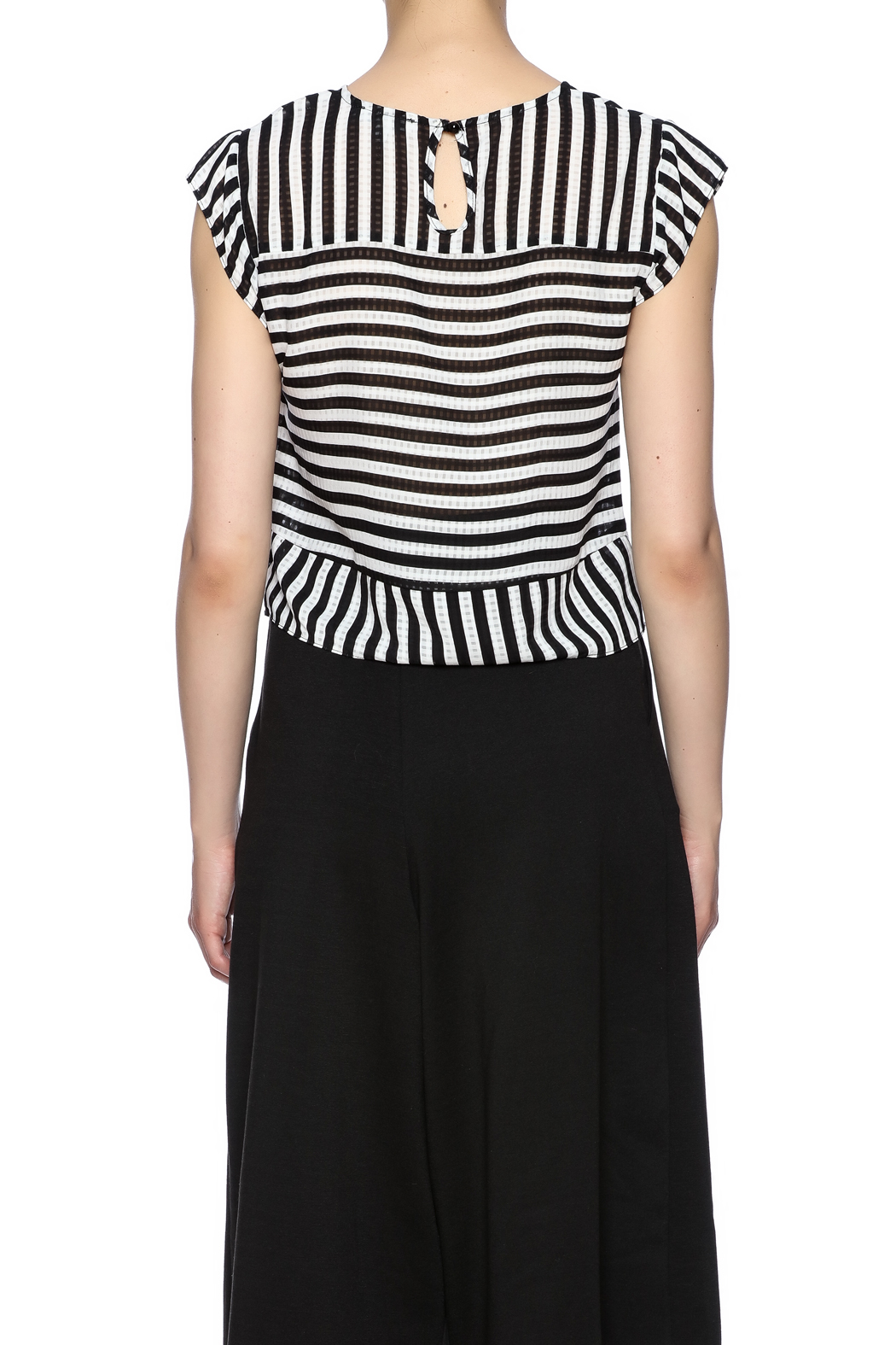 Lucy Paris Stripe Short Sleeve - Back Cropped Image