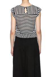 Lucy Paris Stripe Short Sleeve - Back cropped