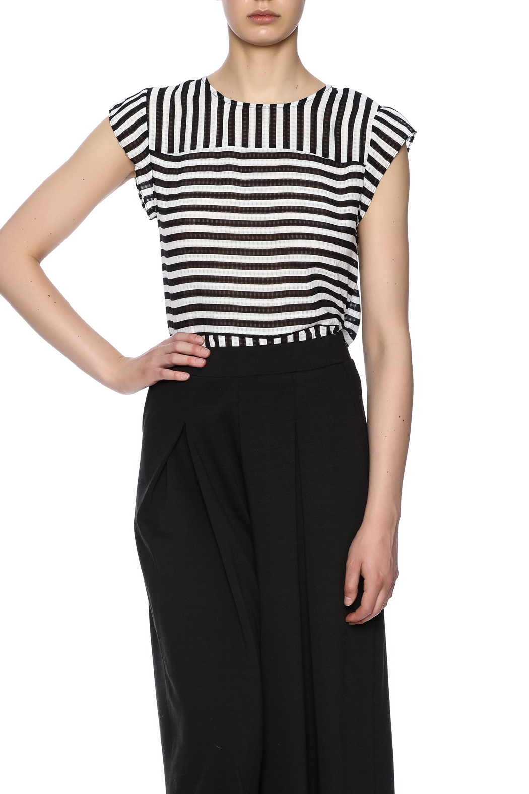 Lucy Paris Stripe Short Sleeve - Front Cropped Image