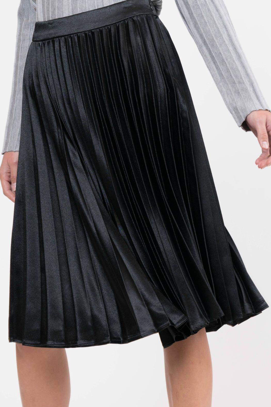 Lucy Paris Pleated Satin Skirt - Front Full Image