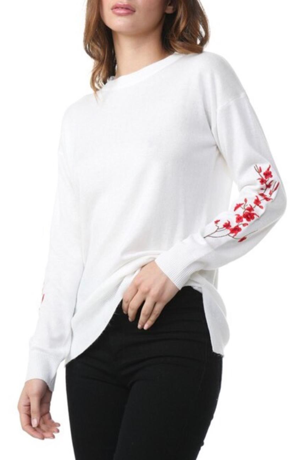 COVERSTITCHED Embroidered Sleeve Sweater - Main Image