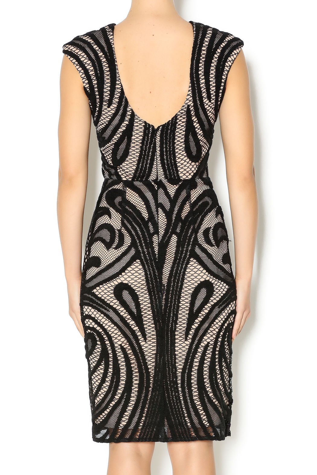 Lumiere Black Lace Dress - Back Cropped Image