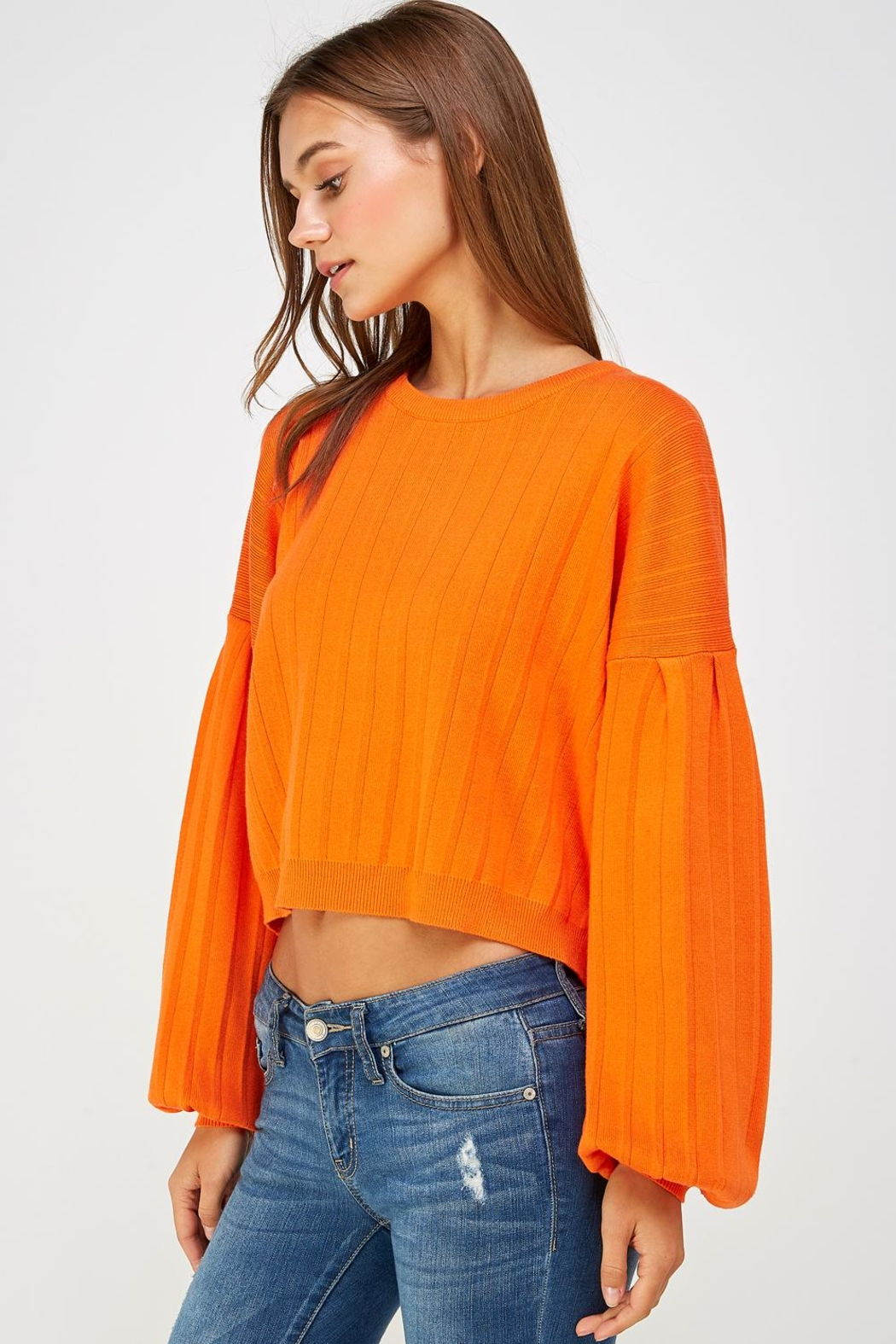 Lumiere Balloon Sleeve Sweater - Side Cropped Image