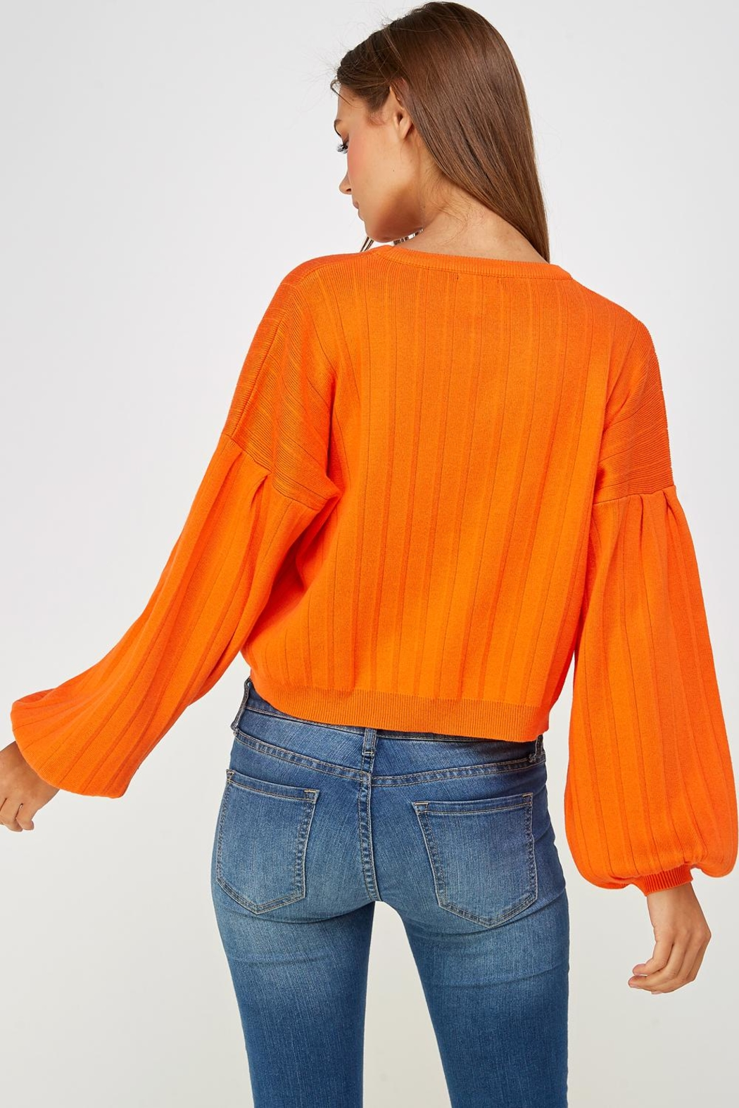 Lumiere Balloon Sleeve Sweater - Back Cropped Image