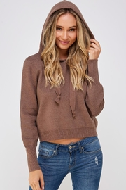 Lumiere Brown Drawstring Hoodie - Back cropped